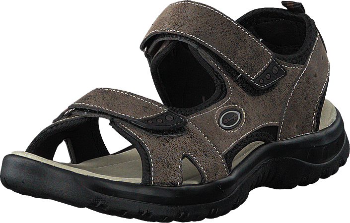 Champion - Sandal Trek Coffee Bean