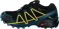 Speedcross 4 Gtx Black/reflecting Pond/spectra