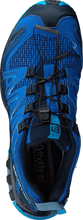 Kjøp Salomon Xa Pro 3d Sky Diver/navy Blazer/hawaiian Sko Online