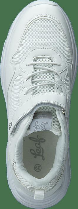 Leaf Tuna White 215487793