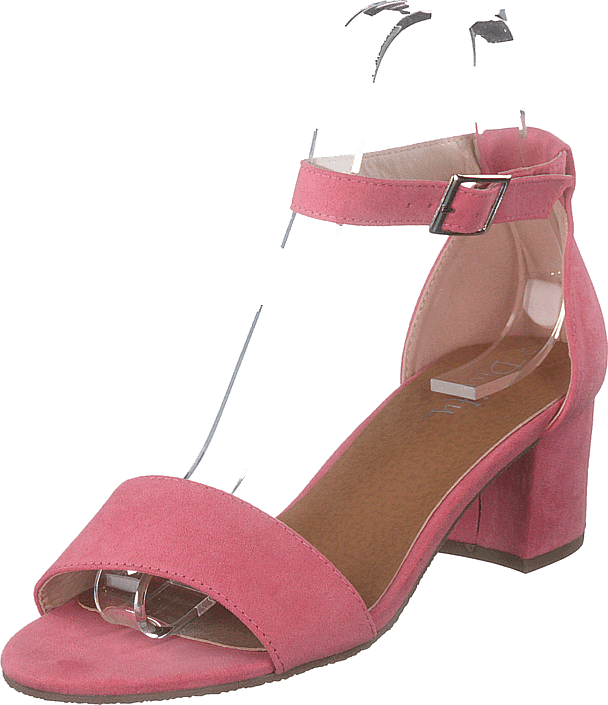 Duffy - 97-18551 Coral
