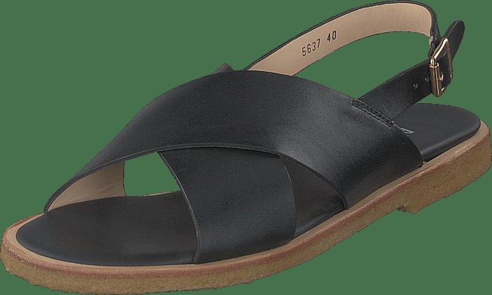 Angulus - Sandal With Buckle Black