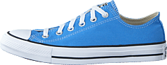 Chuck Taylor All Star Ox Coast Blue