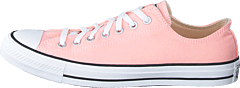 Chuck Taylor All Star Ox Storm Pink