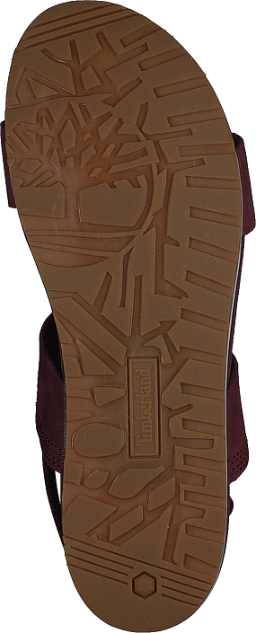 Malibu Waves 2 Band Sandal Chocolate Truffle