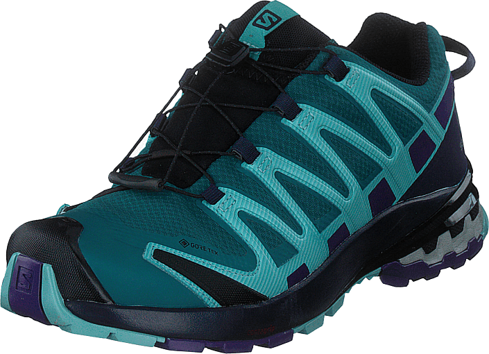 Salomon - Xa Pro 3d V8 Gtx W Shaded Spruce/evening B/meadow