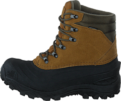 M Chilkat Iv Utility Brown