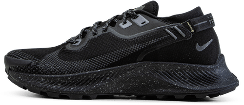 Pegasus Trail 2 Gore-Tex Black/Grey