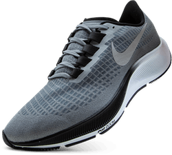 Air Zoom Pegasus 37 Grey