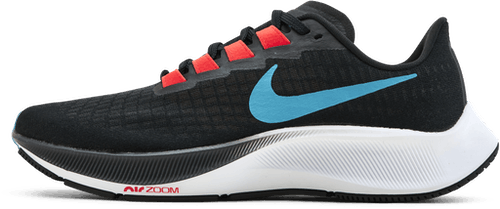 Air Zoom Pegasus 37 Blue/Black