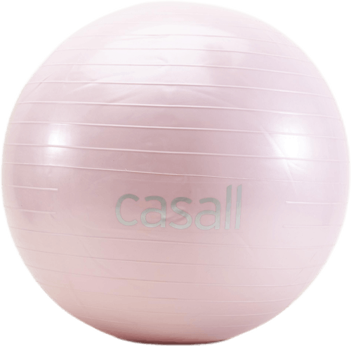 Gym Ball 60cm Lila