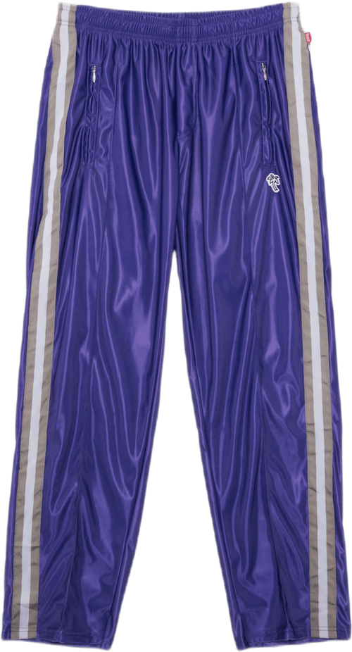 Track Pants Purple