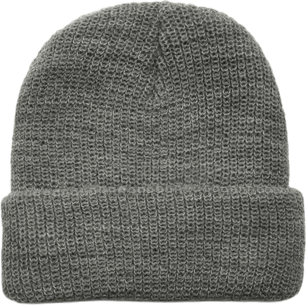 Usual Beanie Gray