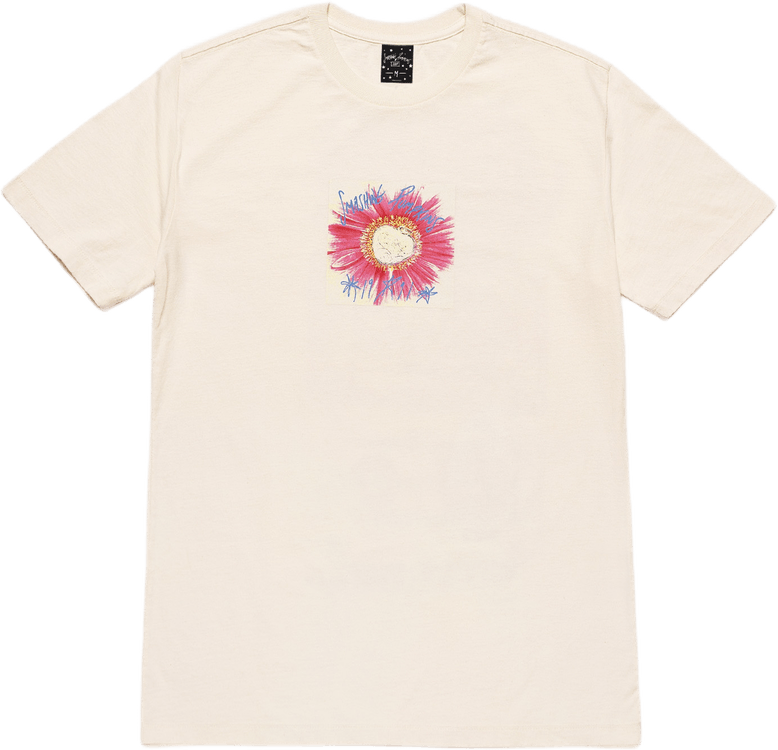 Window Paine Tee White