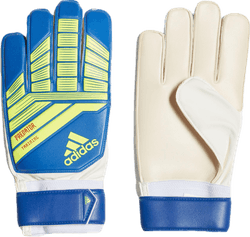 Predator Training Blue/Yellow