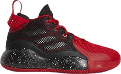 D Rose 773 2020 Patterned