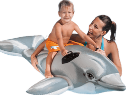 Lil' Dolphin Ride-On Grey
