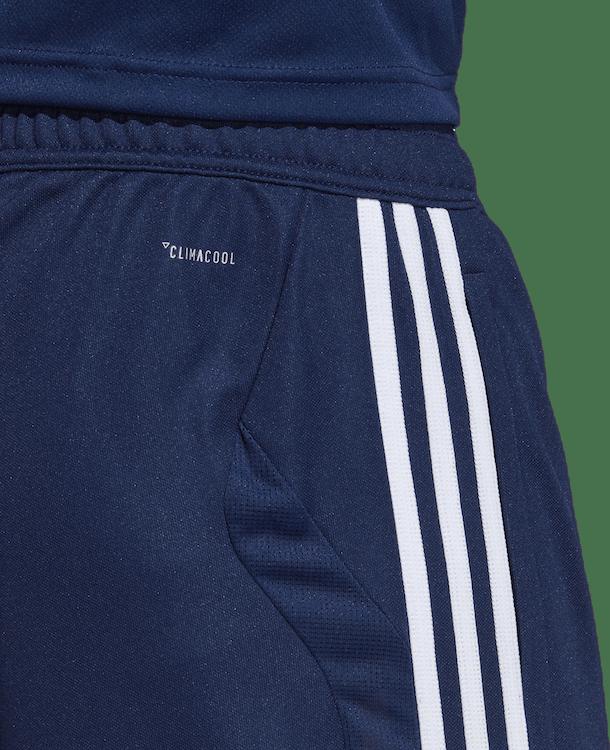 Tiro 19 Training Pant Blue/White