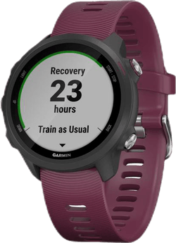 Forerunner 245 Purple/Black