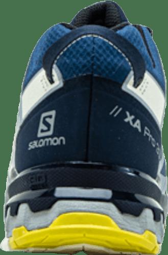 XA Pro 3D v8 GTX Blue