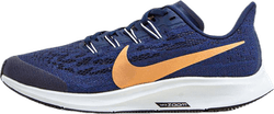 Air Zoom Pegasus 36 GS Blue/Red