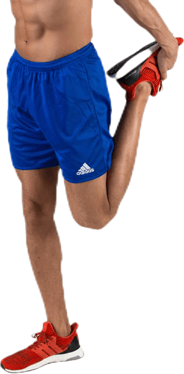 Parma 16 Shorts WB Blue