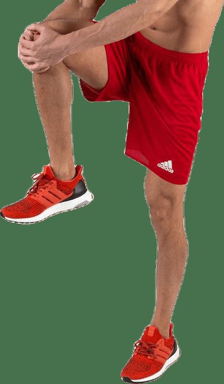 Parma 16 Shorts WB Red