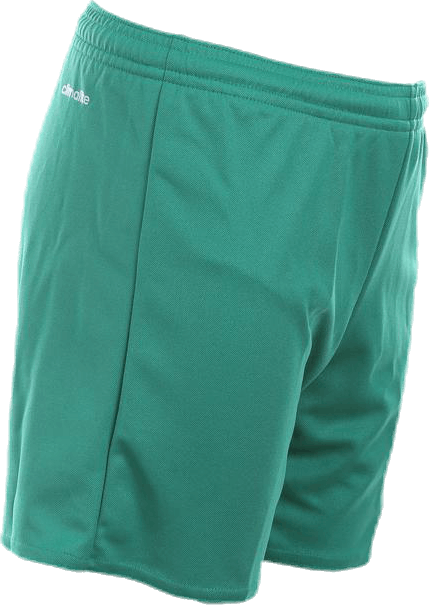 Parma 16 Shorts WB JR Green