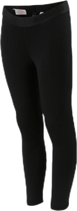 Alpha Skin Winterized Tights Black