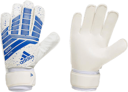 Predator Training Blue/White