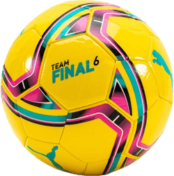 teamFINAL 21.6 MS Ball Blue/Yellow