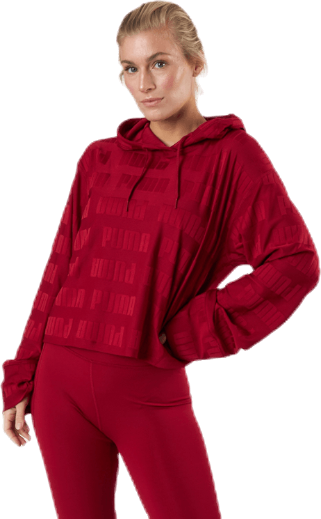 Train First Mile Mono Hoodie Red