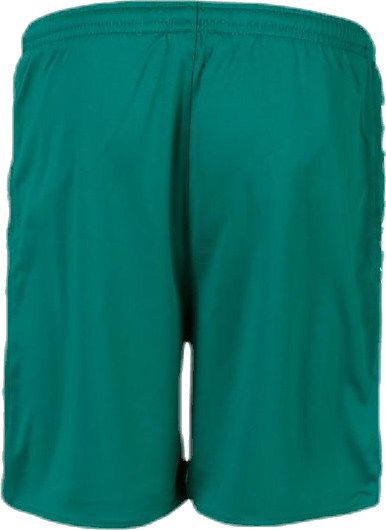 Player Shorts Argentina Green