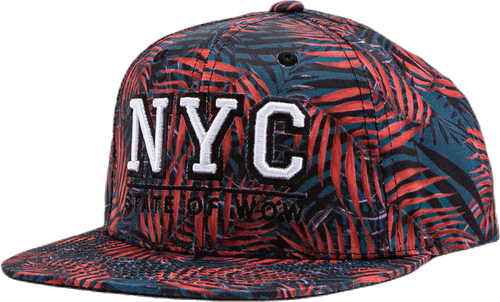 Kami Nyc Youth Snapback Patterned