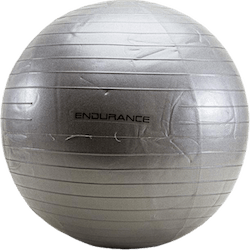 Gym ball 55 CM Silver