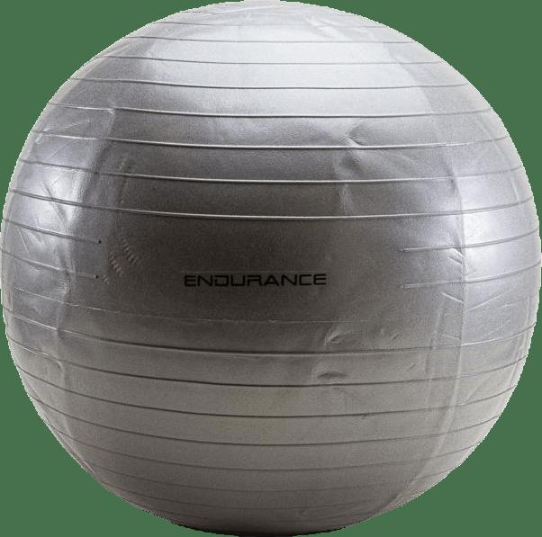 Gym ball 65 CM Silver
