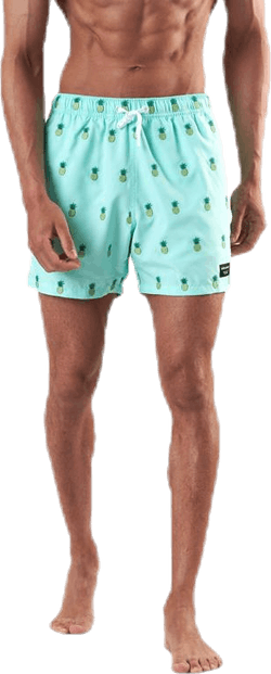 Santiago Swim Shorts Green