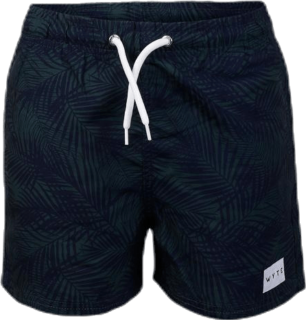 Jr Luca Swim Shorts Blue/Green