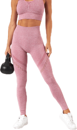 Fitness Seamless Mesh Tights Pink