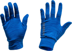 Gloves W16 Blue