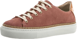 Jerome W Suede Shoe Pink