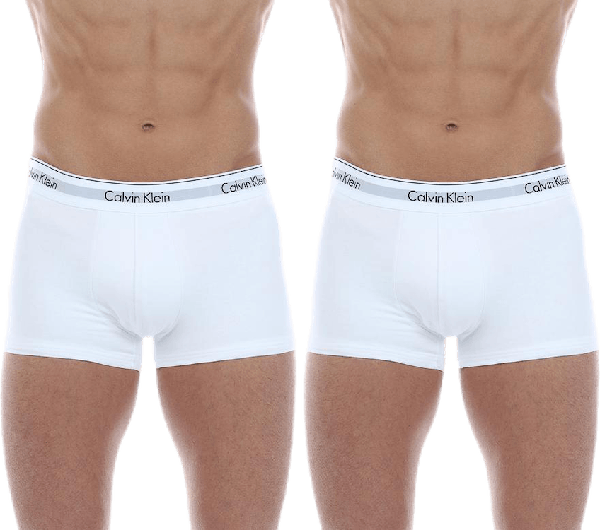 Trunk 2-Pack White