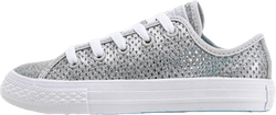Chuck Taylor All Star Mesh Silver