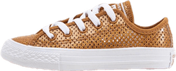 Chuck Taylor All Star Mesh Brown