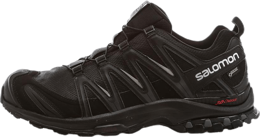 XA Pro 3D GTX® Black/Grey