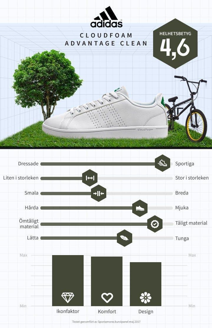 Vita sneakers Adidas.jpg
