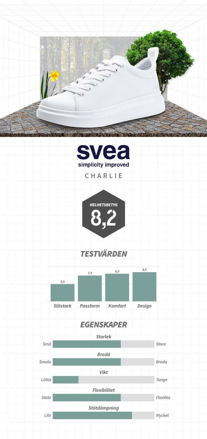 SE_SVEA_DAM_2.jpg