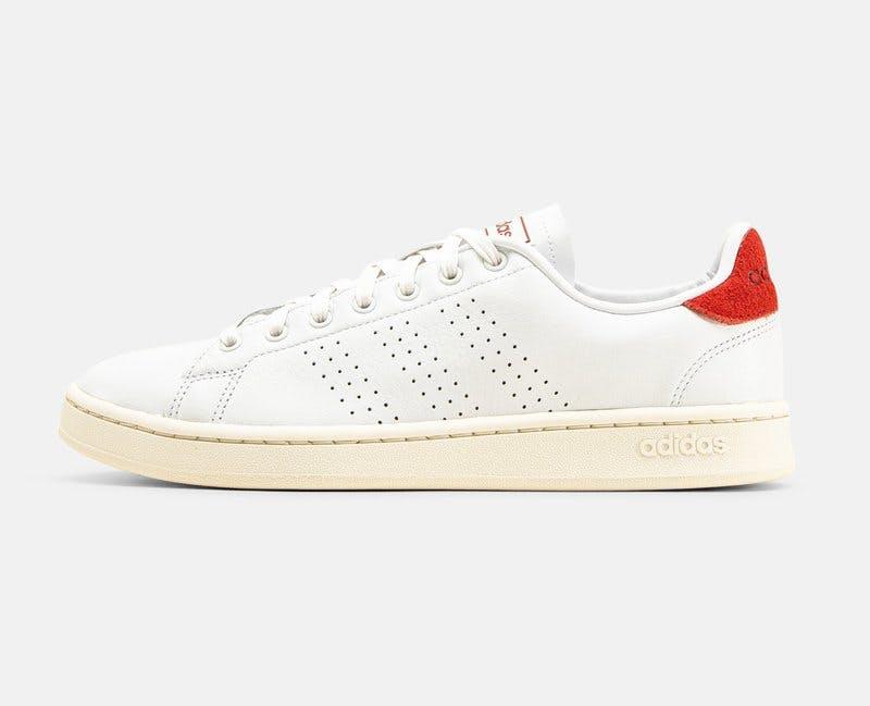 Sneakers Adidas.jpg