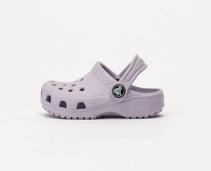 Toffel Crocs.jpg