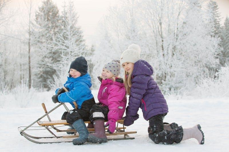 viking-sled-group.jpg
